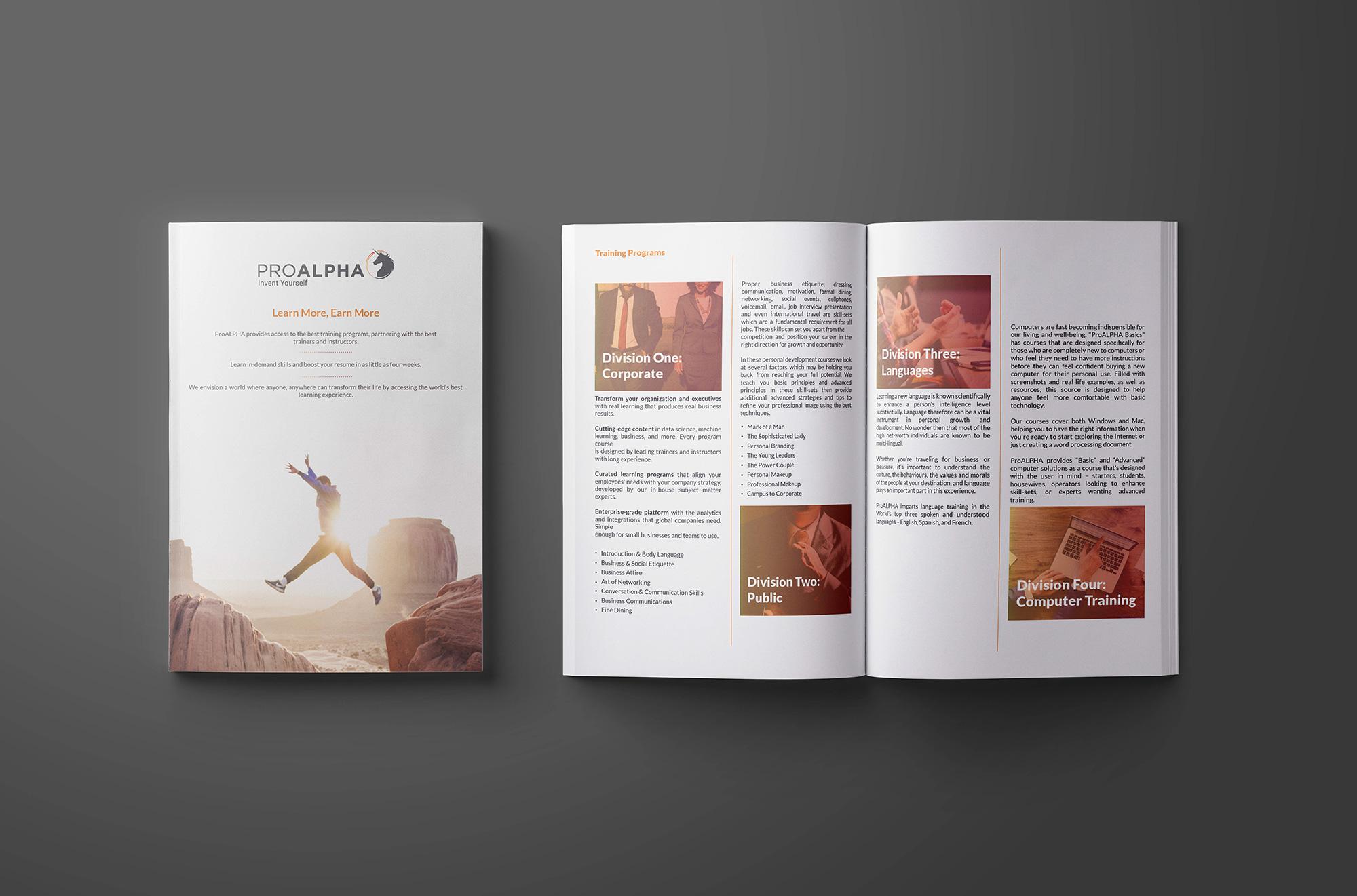 Brochure Designing by Brandeur