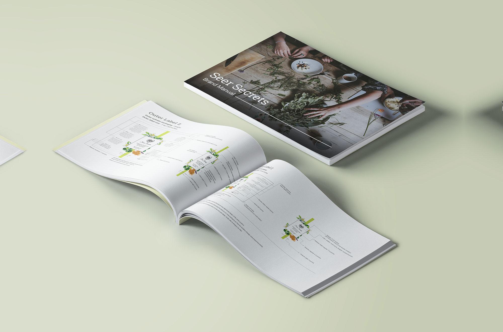 Seer Secrets Brochure Design